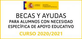 Becas y ayudas para alumnos con NEAE del MEC 2020/2021